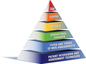 MDS Pyramid - Post Acute Consulting